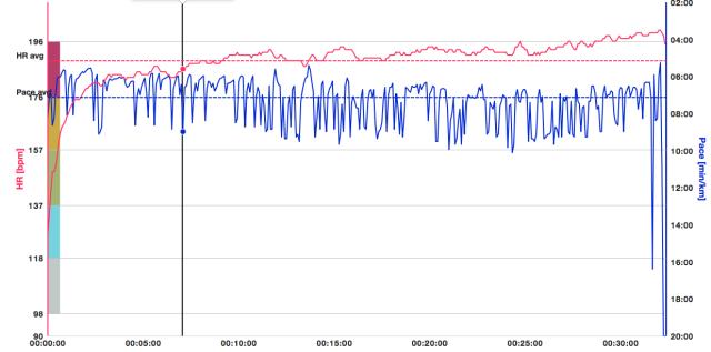 20140928 5km Haarlem Flow export HR en pace
